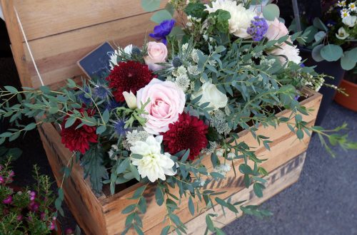 Fleurs – Plantes